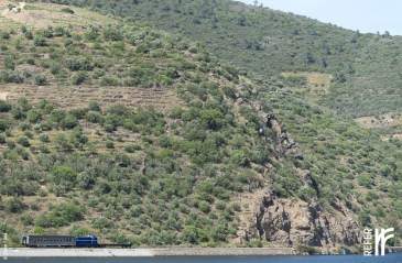 20150423_google_train_douro_portugal_11